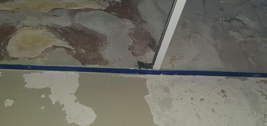 mold-remediation_1